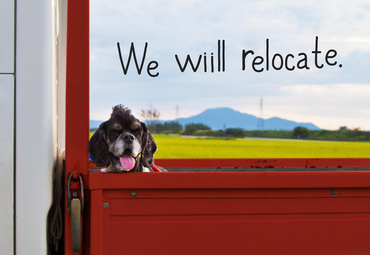 Relocate_eye